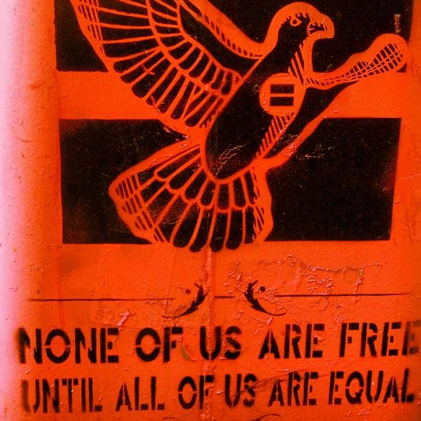 The rising Phoenix says it best.